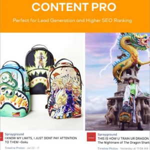 Content Development and Marketing Services Pro package